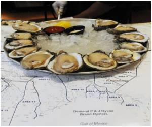 Oysters Becoming Extinct
