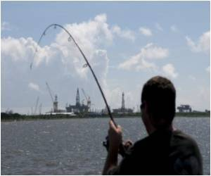 Gulf of Mexico Fishing Waters Reopened