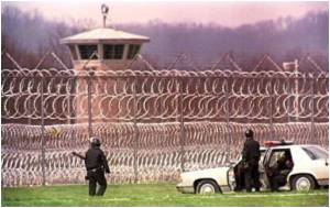 Improve Public Health By Caring for Inmates: Experts
