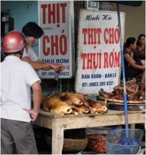 Cholera Outbreak Claims First Victim In Vietnam