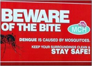 Dengue Toll Mounts in Latin America