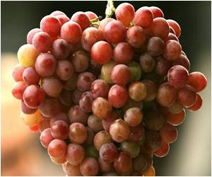 Juicy Japanese Grapes Cost $5,400 a Bunch