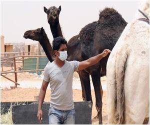 Algeria Reports First MERS Infections