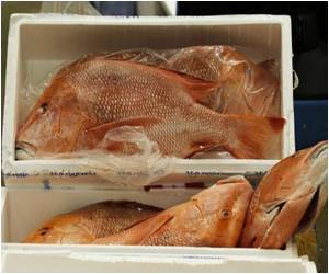 High-Value Fish Menaced by Affluent Asians: Experts