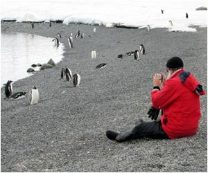 Tourism Threat to Antarctica Warning by Scientists