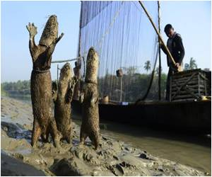 Bangladesh's Otter Fishing Tradition on the Verge of Extinction