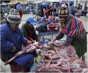 Bolivians Turn Llama Meat into Haute Cuisine
