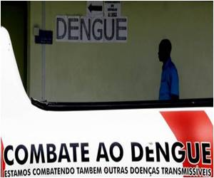 GM Mosquitoes to Aid Brazilian Health Ministry in Its Fight Against Dengue