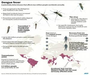 Dengue Claims Nearly 700 Lives In Brazil, Most Deaths Recorded In Sao Paulo