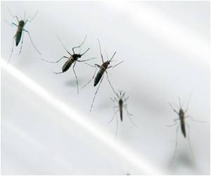 Mosquitoes Spread Microcephaly Disease in Brazil: Health Ministry