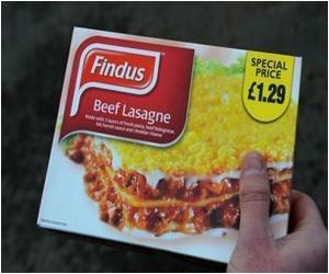 Findus UK: Horsemeat 'contamination' Likely 'Not Accidental'