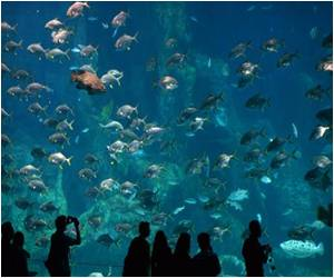 China Unveils World's Largest Aquarium to Promote Domestic Consumption as Driver for Growth