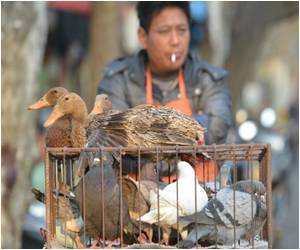 H7N9 Bird Flu Description Downgraded by China