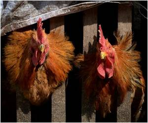 First Death from H5N6 Bird Flu Strain Reported