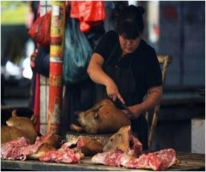 Animal Rights Activists Protest Against Custom of Eating Dog Meat