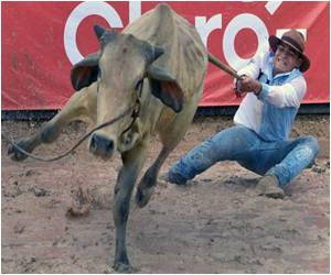 Cowboys Chase Glory in Colombia
