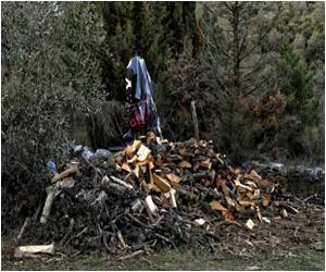 Economic Chill Prompts Greeks to Axe Trees for Warmth