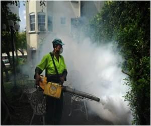 El Salvador Issues Alert Against Mosquito Diseases