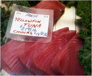 Rise in Mercury Levels in Hawaiian Ahi Tuna