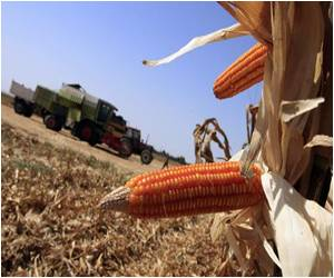 European Parliament Allows Members to Take a Call on Allowing Genetically Modified Crops (GMOs)