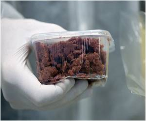 Up to 5% Horsemeat Shown in Beef Products Tested By EU DNA Tests