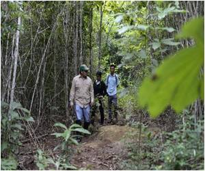 Former Guatemala Gum Growers Settle Down in Sustainable Jungle