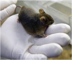 Mouse With More Human-like Immune Response Designed
