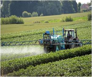 International Agency for Research on Cancer Sees a Risk in Pesticides