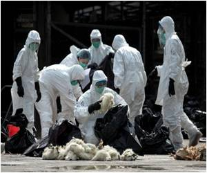 Alert Raised by Chinese Scientists Over New Bird Flu