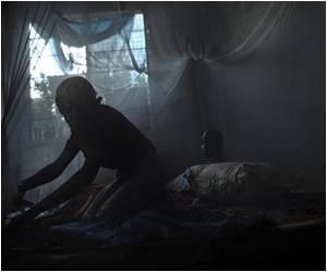 Worldwide Malaria Deaths Much Higher Than Estimated
