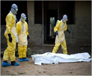 Bats in the Hollow Tree - Ebola's Ground Zero