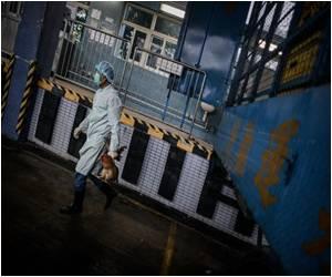 Bird Flu Scare Steps Up Border Checks in Hong Kong