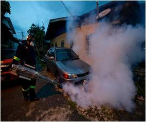 Increased Number of Dengue Deaths in Malaysia