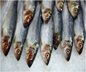 Omega-3 Fatty Acid Prevents the Onset of Schizophrenia, Other Psychotic Disorders