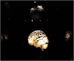 New Cell Type is Implicated in Epilepsy Caused by TBI