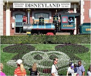 Public Health Authorities In California Declare End of Disneyland-linked Measles Outbreak