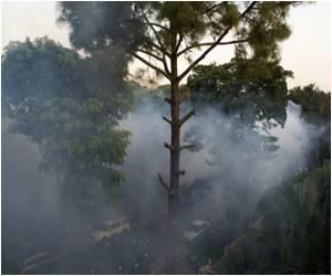 Southeast Asian Countries At Risk of Dengue Epidemic Due to El Nino Season