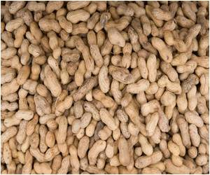 Study Says No Need to Avoid Peanuts While Pregnant