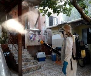 Zika Outbreak Tops 91,000 Cases in Brazil