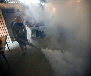 Mexico Reports Six Confirmed Cases Of Zika Virus In Pregnant Women