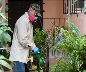 Zika Travel Warning Issued by US for Miami Neighborhood