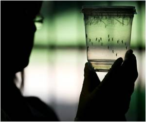 Zika Virus Test Offers Accurate Diagnosis With Simple Color Change