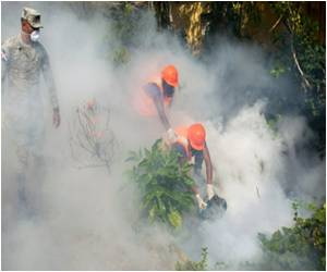 WHO Mulls Global Health Emergency Declaration on Zika Virus Outbreak