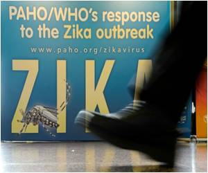 Zika Response Program Only 13 Percent Funded: WHO
