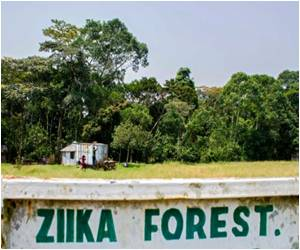 Into the Heart of Ugandan Zika Forest Where the Virus was Found