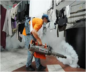 Honduran Dengue Fever Epidemic Confirms 27 Deaths