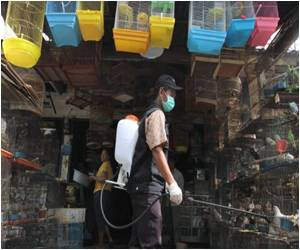 Bird Flu Claims Third Victim in Indonesia