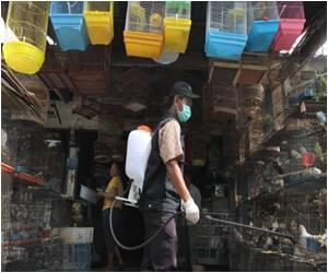 Indonesia Reports Ninth Bird Flu Death