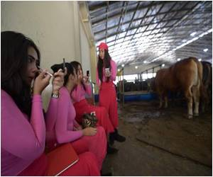 Indonesians Snap Up Cows for Eid Festival