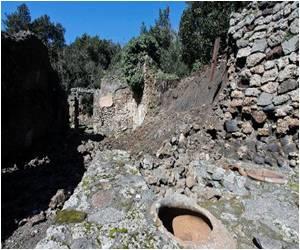 Italy Vows to Save Pompeii by Unblocking 2.0 Million Euros